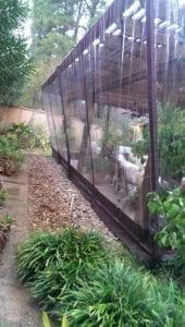 Plant Enclosure