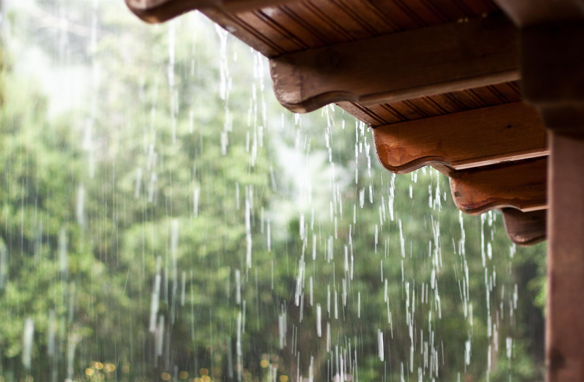 картинки шум дождя изготовить будку кедра